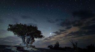 Park Narodowy Wielkiej Kotliny w stanie Nevada
