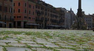 We Włoszech na placach pojawiła się zielona trawa