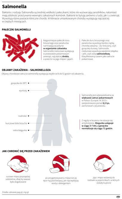 Salmonella (PAP/Maria Samczuk)