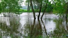 Niż Yvette potężnieje, do soboty spadnie nawet 150 litrów deszczu. Na południu wzbiorą rzeki