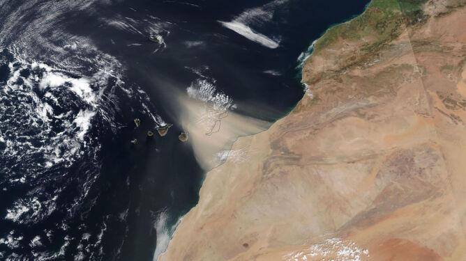 Pył znad Sahary - zdjęcie wykonane 22 lutego przed godziną 22 (NASA Worldview/MODIS)